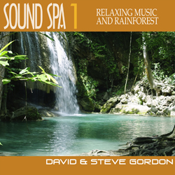 Sound Spa 1 – Relaxing Music and Rainforest by David and Steve