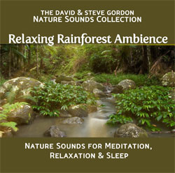 Relaxing Rainforest Ambience- Nature Sounds for Relaxation