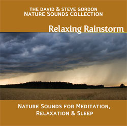 Relaxing Rainstorm - Nature Sounds for Meditation